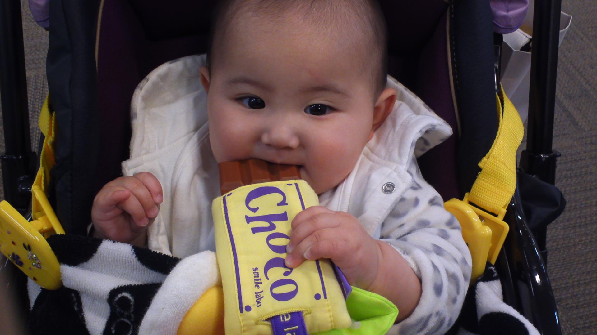 チョコレートもお気に入り